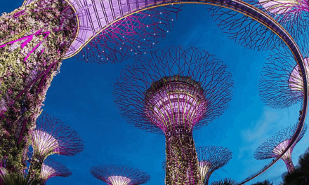 Singapore Tourist Visa – Get the Complete Requirements