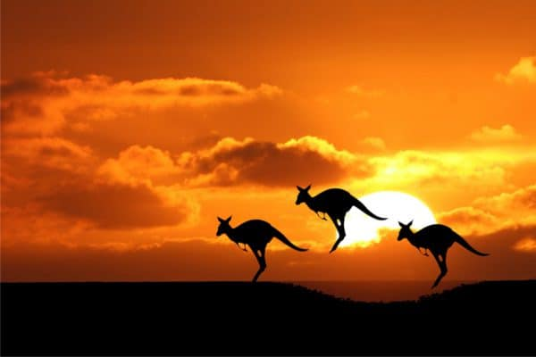 Australia Travel Visa: A Handy Guide for Travellers of 2020