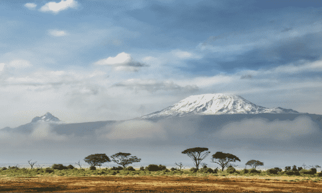 Apply for Kenya Visa the Easy Way with 100% Cashback