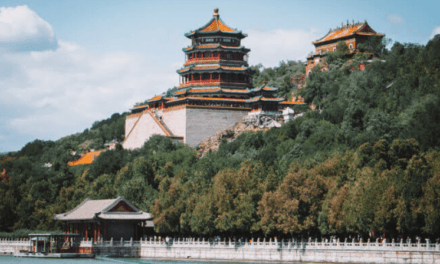 Understanding the China Visa Application Form