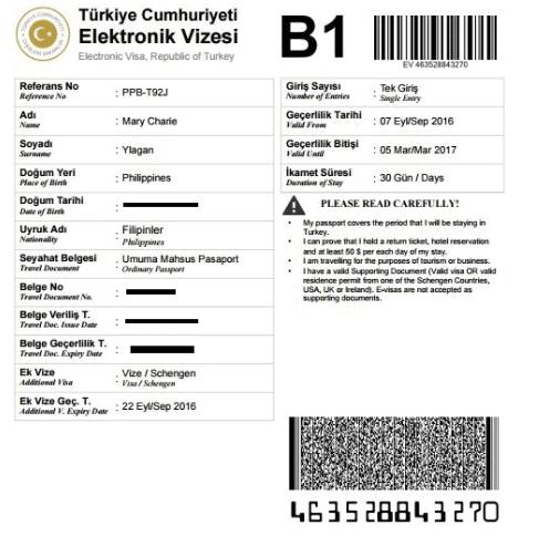 sample turkey evisa