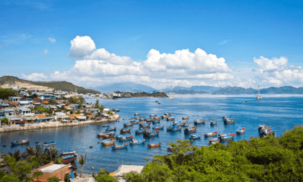What is a Vietnam Multiple Entry Visa?