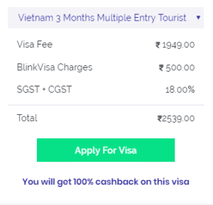 Vietnam multiple visa 3 months
