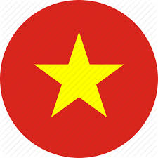 Blink visa Vietnam 3 Months Single Entry Tourist Visa package
